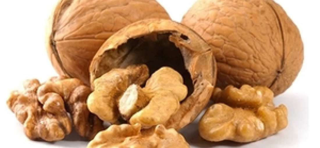 Global Walnut market scrutinized in new research - WhaTech