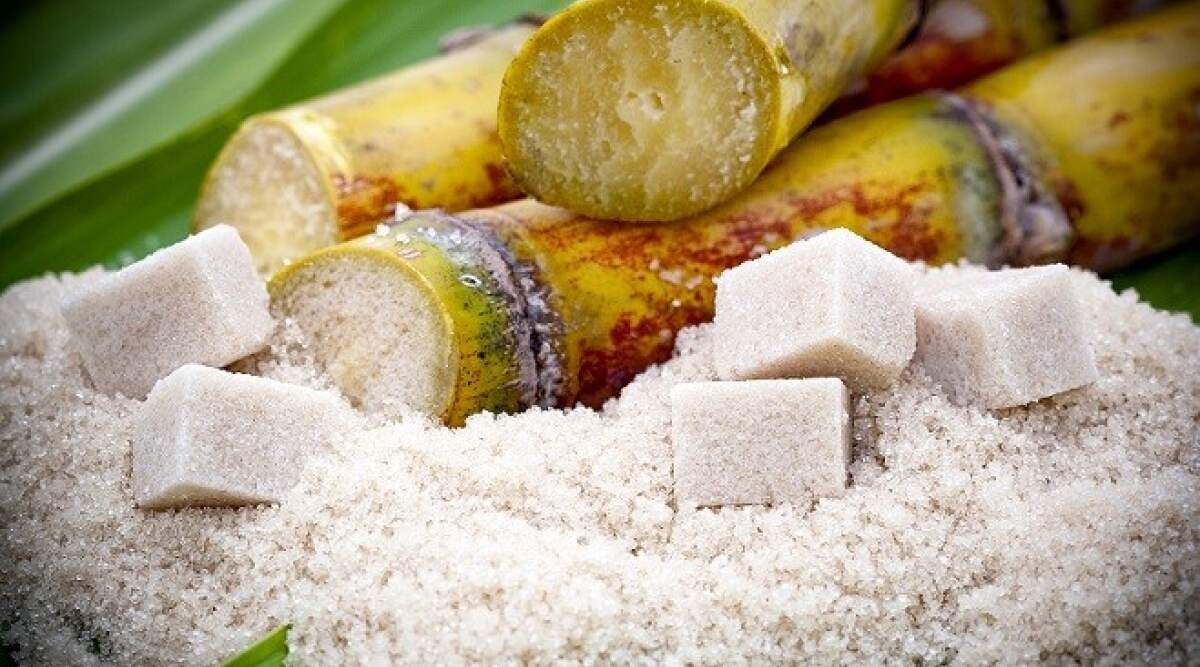 Alcohol and Starch/Sugar Enzyme Market investigated in the latest research - WhaTech