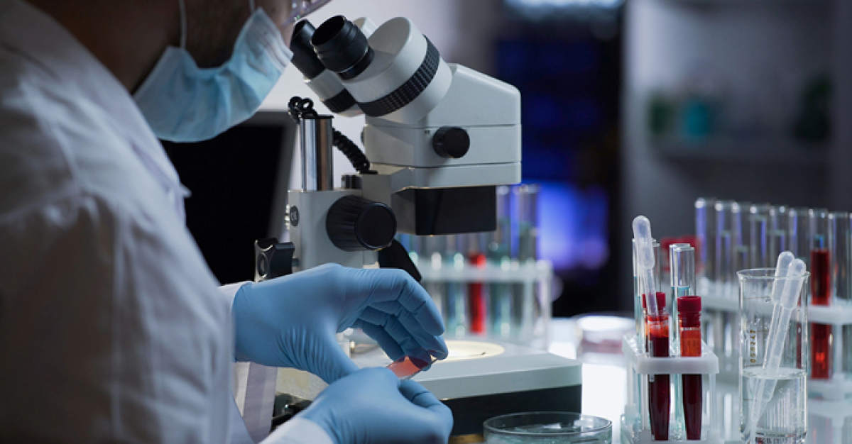 Antibody Production Services market scrutinized in new research - WhaTech