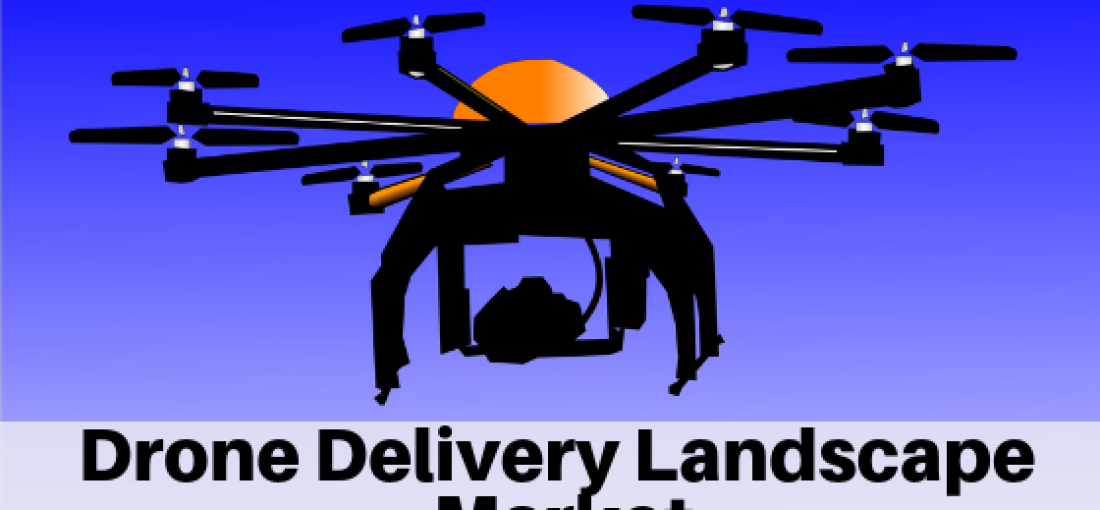 Drone Delivery Landscape Market