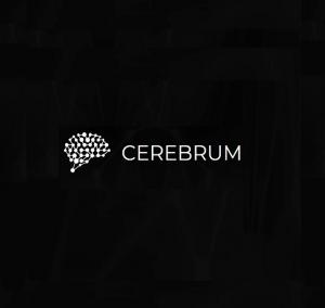Cerebrum Infotech - Custom Software Development