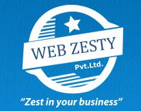 Webzesty - Website Development Company in Delhi, India
