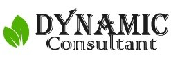 Dynamic Consultant - Digital Marketing Company